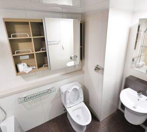 drain-toilet-price